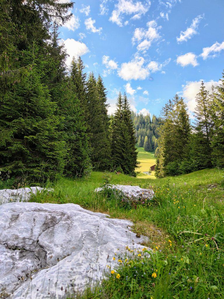 Nature near Flims Waldhaus Wellness Resort