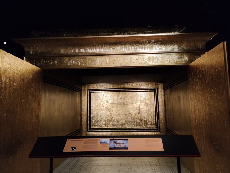 Tutankhamun – His Tomb and His Treasures at Halle 622 Zurich
