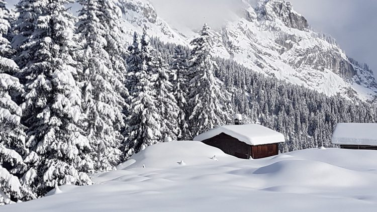 Flims with Topcard Mountain Pass