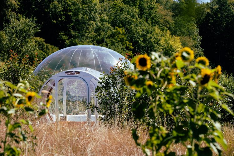 Sleeping under the Stars in A Bubble Hotel