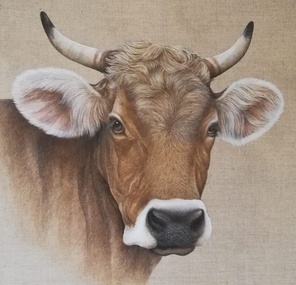 Cow by Marianna Carruzzo-Dünnenberger from Switzerland