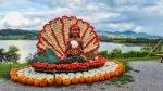 The Fabulous 2020 Jucker Farm Pumpkin Exhibition