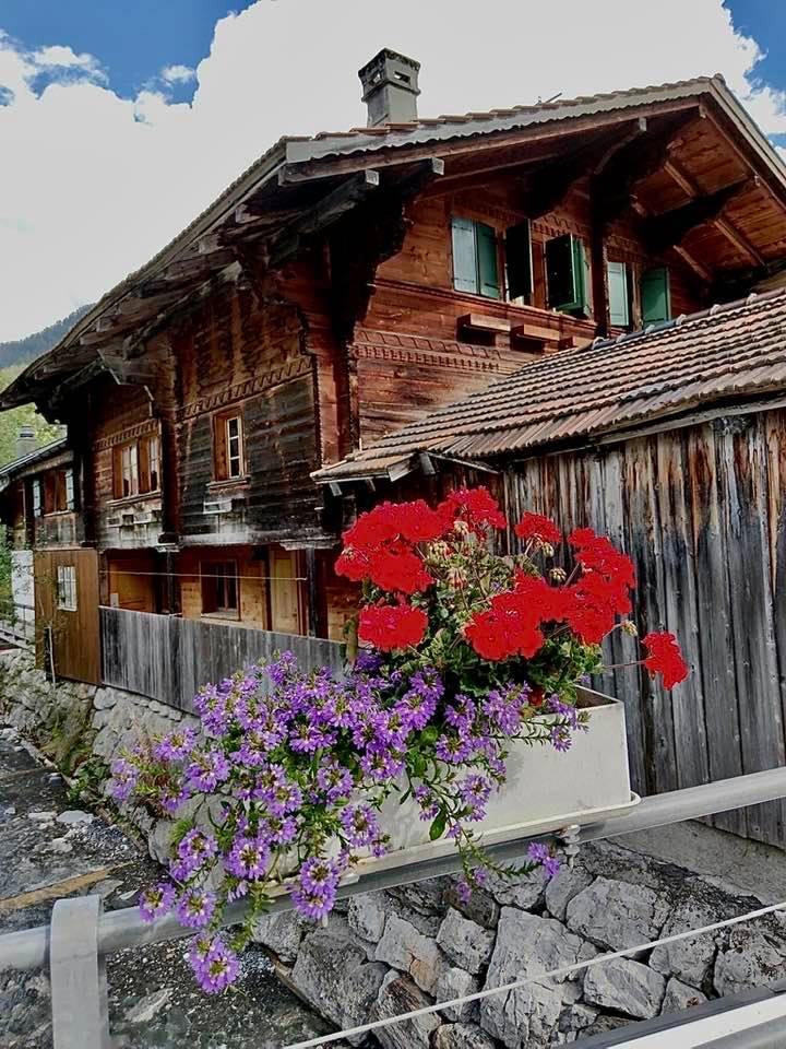 Wooden Chalets near Les Diablerets Switzerland