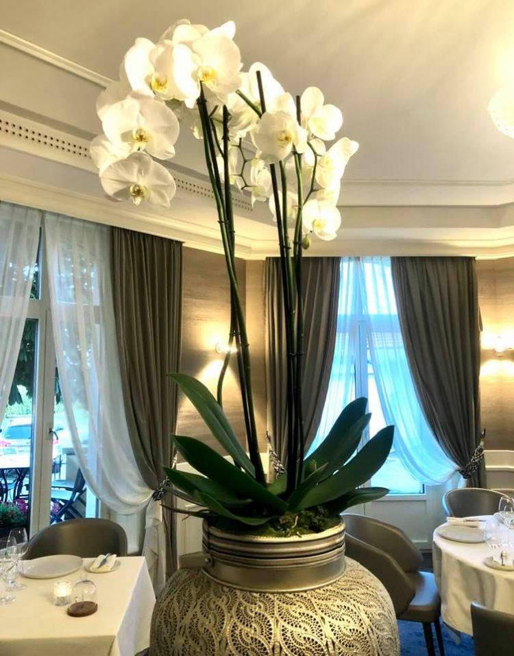 Dining room at Maison Wenger Le Noirmont
