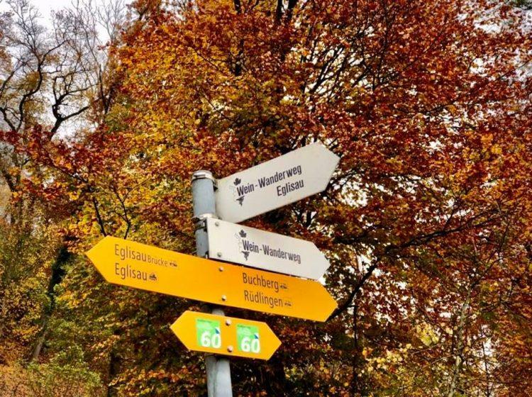 A Circular Hike Around Eglisau in Autumn