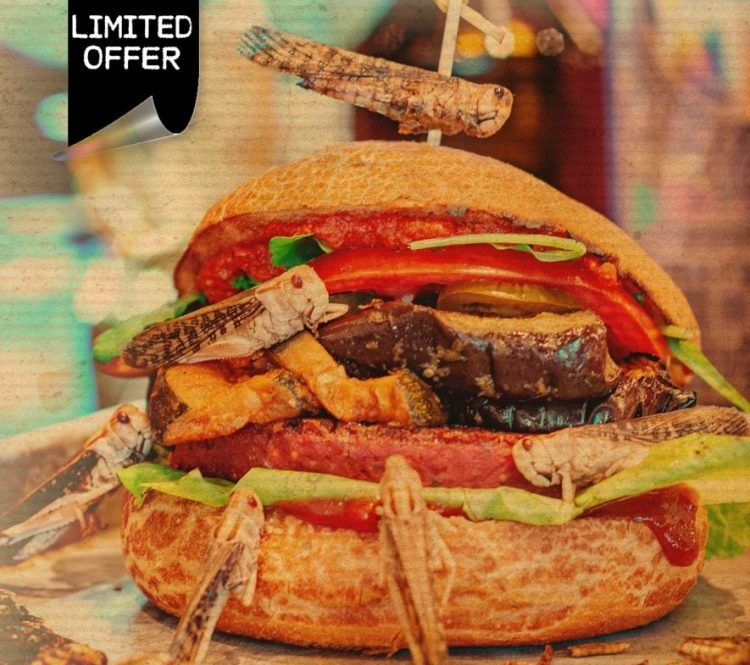 The Insect Burger at the Butcher Restaurants