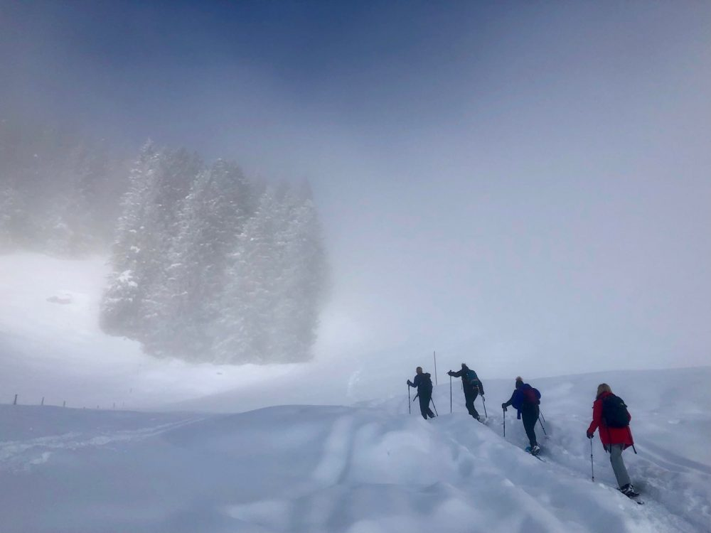 Winter Snowshoe Hike in Ibergeregg