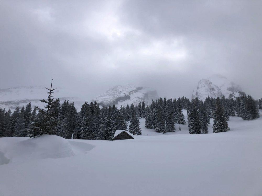The Alp Selamatt Snowshoe Trail - Not Far From Zurich