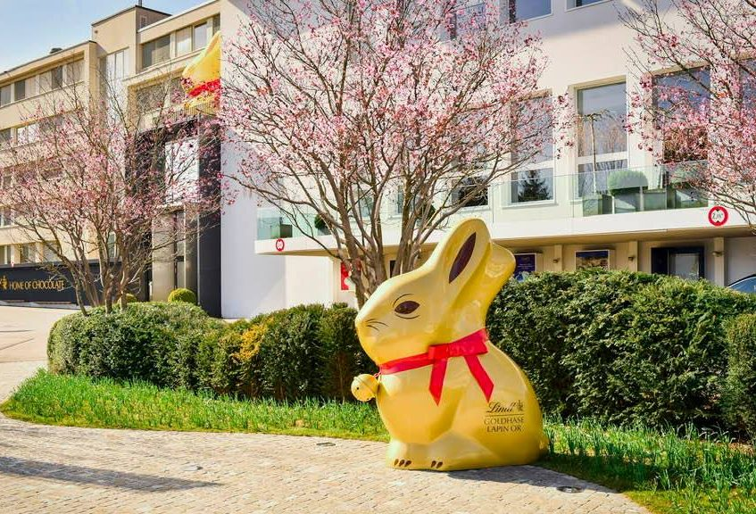Lindt Bunny Contest