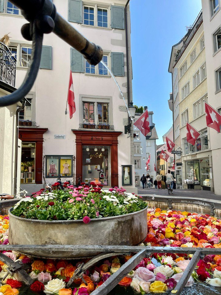 The Beautiful Rose Filled Fountains of Zurich for Easter 2021