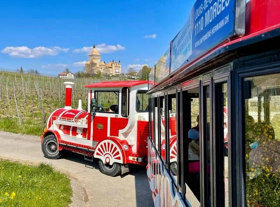 The Bimmelbahn Throught The Vineyards