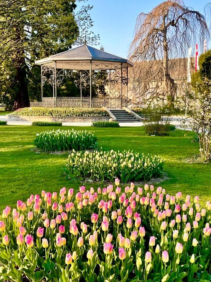 Tulip Festival Morges