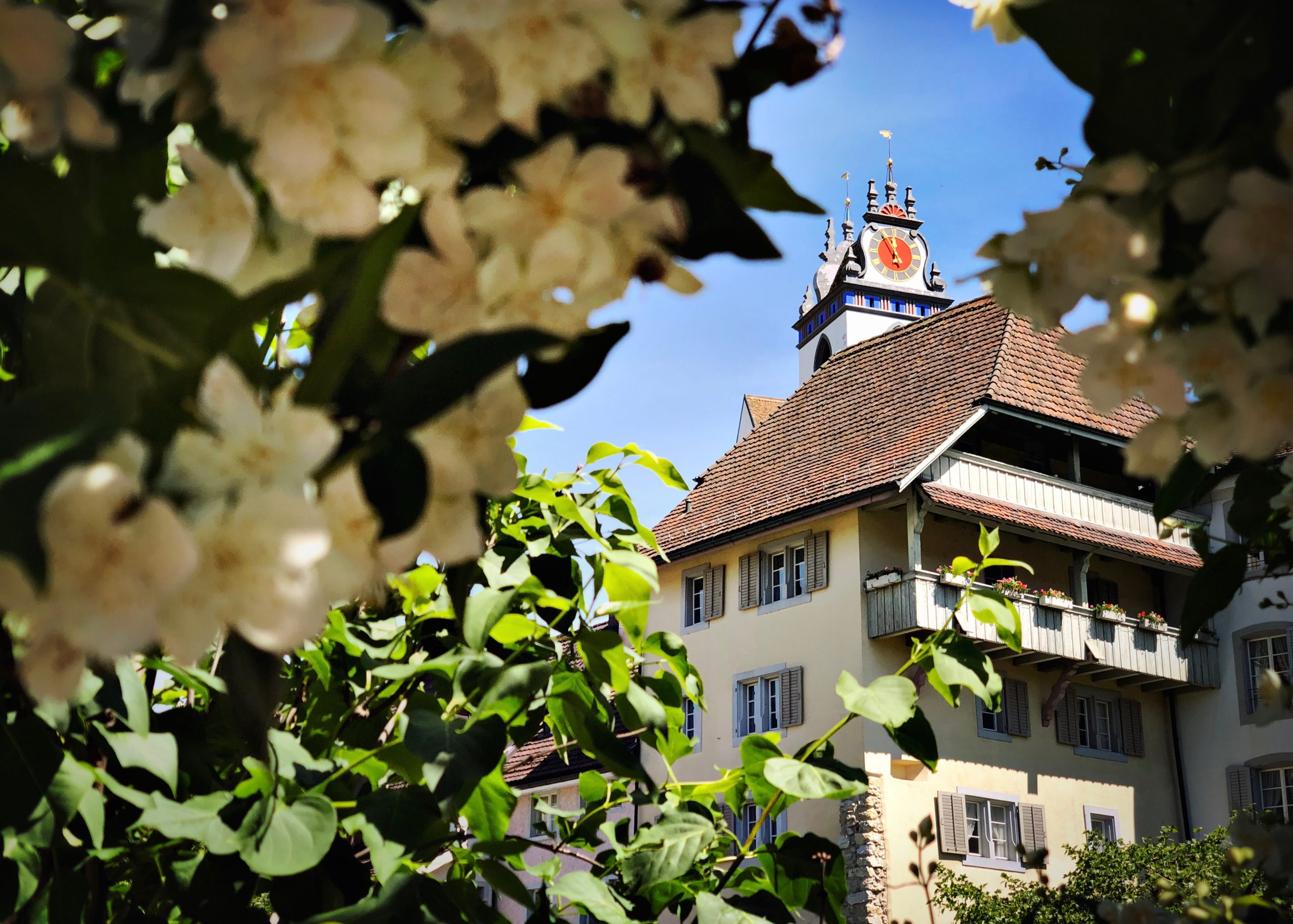 Day Trip to Aarau – Top 10 Things to Do in the Capital of Canton Aargau