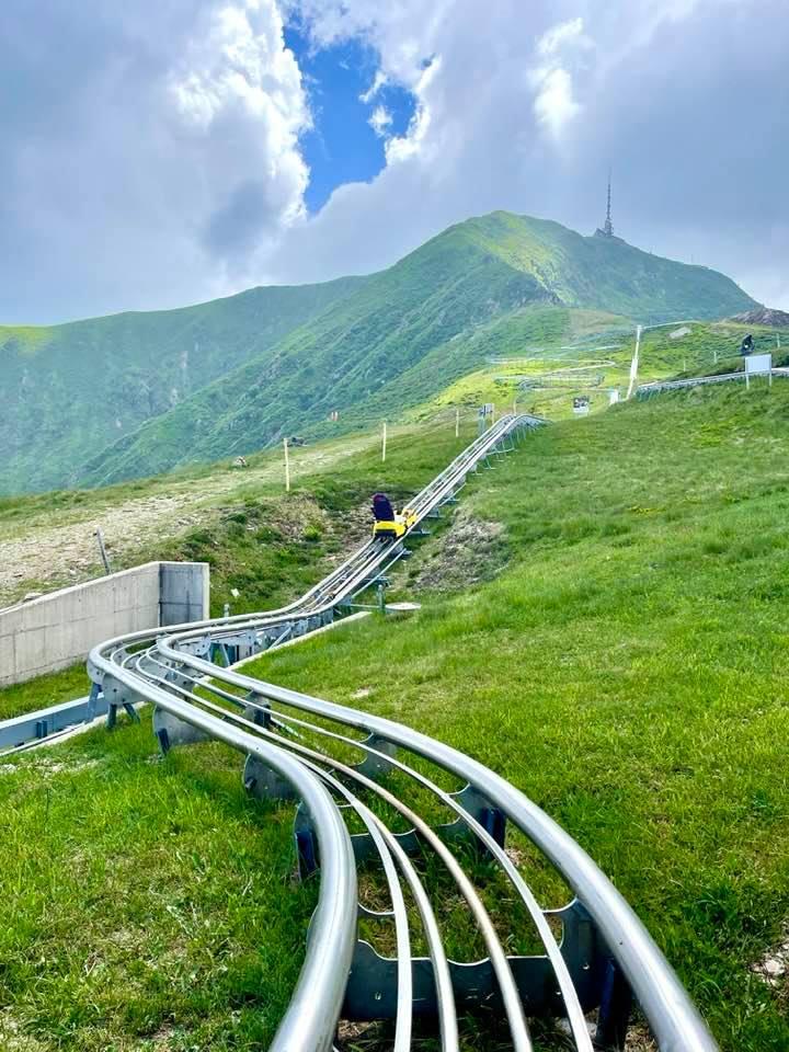 The Alpine Coaster toboggan run