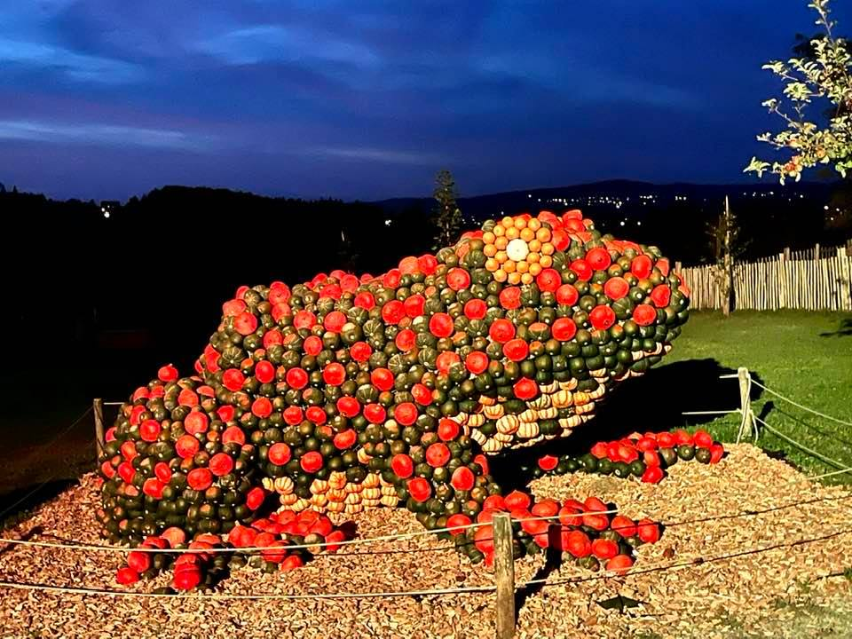 The Wonderful Pumpkin Exhibition at the Jucker Farm - Kürbis Austellung - frog