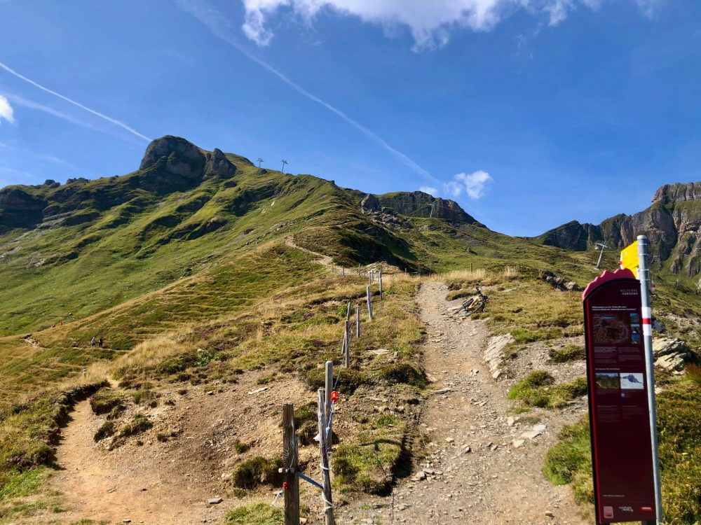 the path to Leist - 7 peaks hike Flumserberg