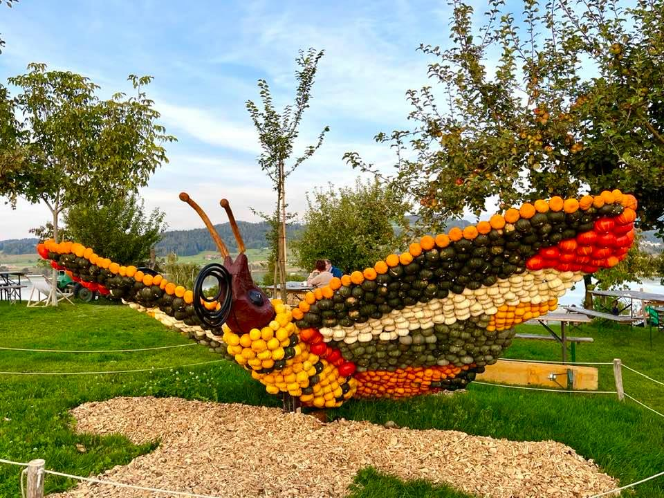The Wonderful Pumpkin Exhibition at the Jucker Farm - Kürbis Austellung - chameleon