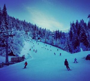 Skiing near Zurich